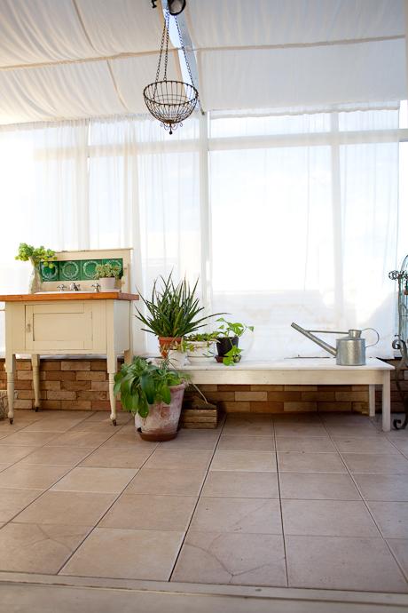 サンルーム、植物、アトリエ、洋風一戸建、一軒家スタジオ、関東都内の自然光スタジオ、世田谷区