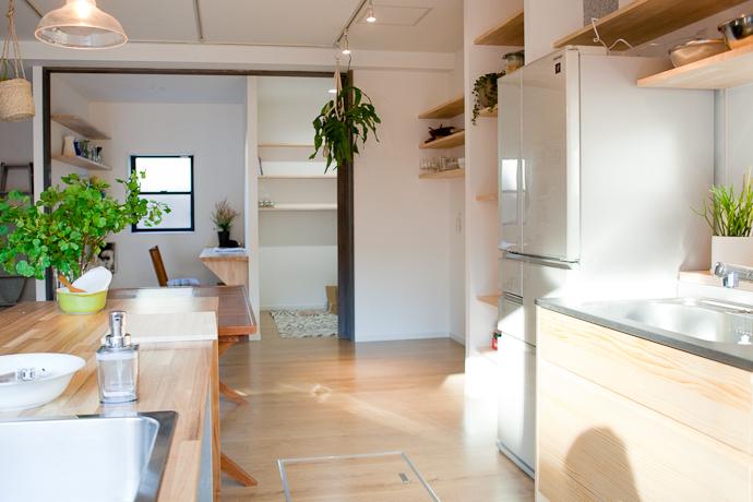 自然光、関東都内東京スタジオ、キッチン、リビング、植物